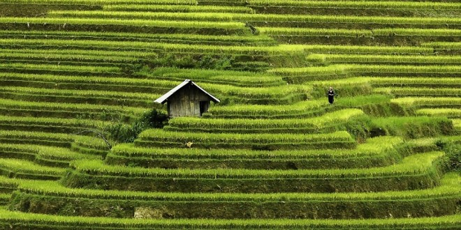 Forbes: Vietnam as one of the cheapest destinations in 2017