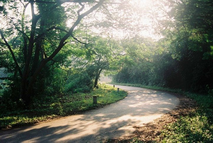 Most Scenic Roads in Vietnam – Travel information for