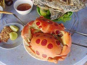 moon-crab
