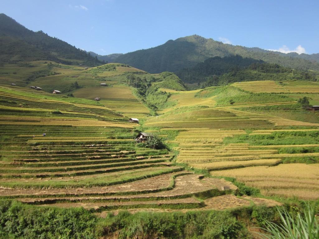 Mu Cang Chai (Vietnam) by Sarawut Intarob   Vietnam travel