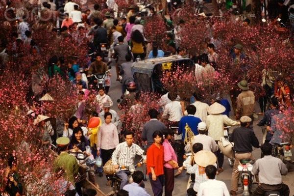 10 Feb 1994, Hanoi, Vietnam --- Residents of Hanoi, Vietnam purchase plum tree branches in the Old Quarter to celebrate Tet. --- Image by © Steve Raymer/CORBIS