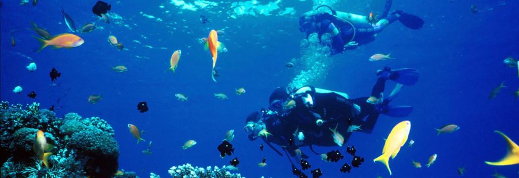 nha-trang-diving
