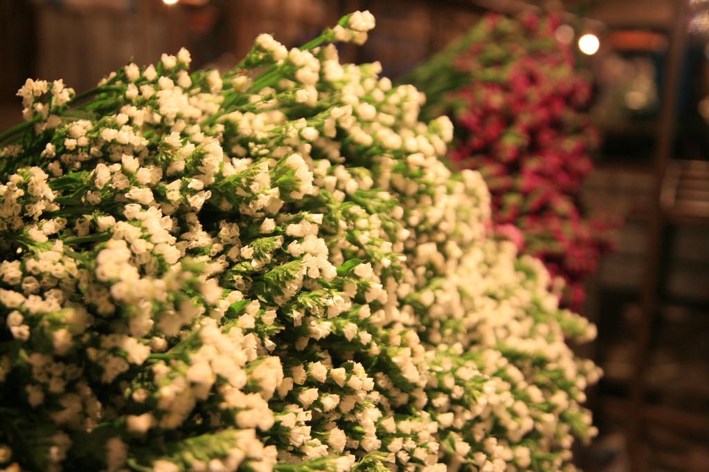 quang-ba-flower-market