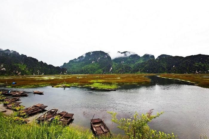 van-long-marsh