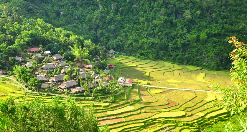 Lac VIllage with green rice terrace and stilt houses in Mai Chau Valley