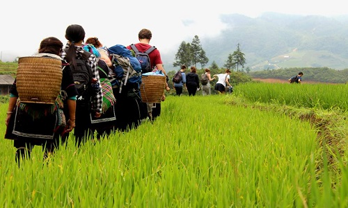 trekking in Mai Chau vietnam travel